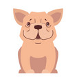 cute small dog cartoon flat icon vector image