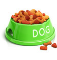 Bowl with dog feed vector image