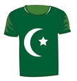 t-shirt with flag of the pakistan vector image