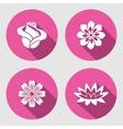 Flower icons set Rose chamomile blue poppy vector image