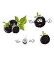 Ripe cartoon blackberries fruits characters vector image