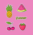 funny stickers with summer fruits and berries vector image