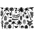 tropical silhouette collection vector image