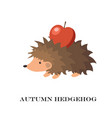 cute hedgehog isolated on vector image