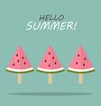 Watermelon fruit ice cream vector image