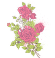 rose bouquet vector image vector image