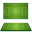 football field 3d vector image vector image