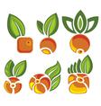 Berry symbols vector image