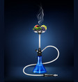 realistic hookah fruit composition vector image