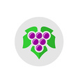Grape logo vector image