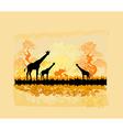 African savannah vector image