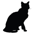 Cat Silhouette 4 vector image vector image