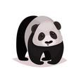 panda bear animal cartoon vector image