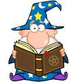 Wizard Holding A Magic Book vector image