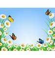 background grass vector image vector image