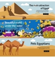 Travel to Egypt banner set Tourist vector image
