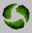 green christmas wreath vector image