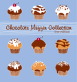 Chocolate Muffin Collection Lined vector image vector image