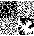 animal skin seamless patterns vector image vector image
