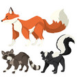Different wild animals on white background vector image