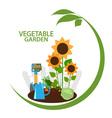 Vegetable garden vector image
