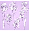 iris doodle set vector image