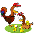 rooster hen and chickens vector image