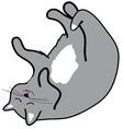 Sleepy Cat vector image
