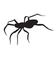 Black spider Silhouette vector image