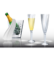 champagne in ice vector image