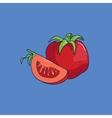 Cartoon style tomato vector image