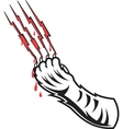 Tigers Claw vector image
