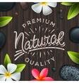 Natural premium quality label spa concept vector image
