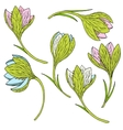 set of snowdrops vector image