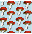 background with mushrooms vector image