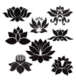 lotus pattern flowers silhouettes vector image