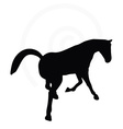 horse silhouette in looking good pose vector image