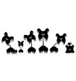 set of animals dog terrier vector image