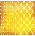 honey pattern on yellow background vector image