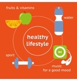 Infographic of healthy lifestyle vector image