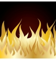 Burn flame fire vector image