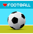 Love Football Theme on Blue and Green Background vector image