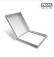 pizzza box vector image