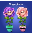 Two roses in pots vector image vector image