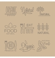 Bio Food Handdrawn Linear Lables Set vector image