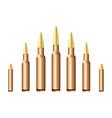 Caliber bullets vector image