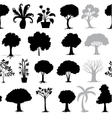 various trees vector image vector image