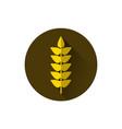 wheat spike icon ripe crop grain vector image