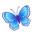 butterfly graphic vector image