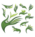 Spring leaves wirh human hands vector image vector image
